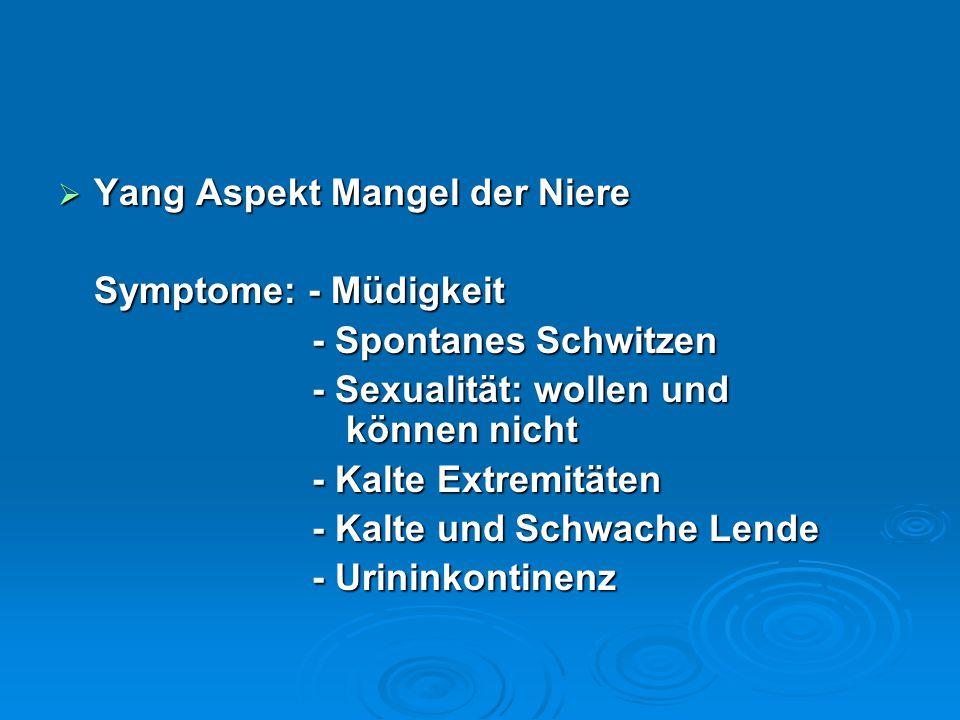  Yang Aspekt Mangel der Niere Symptome: - Müdigkeit - Spontanes Schwitzen - Spontanes Schwitzen - Sexualität: wollen und können nicht - Sexualität: wollen und können nicht - Kalte Extremitäten - Kalte Extremitäten - Kalte und Schwache Lende - Kalte und Schwache Lende - Urininkontinenz - Urininkontinenz