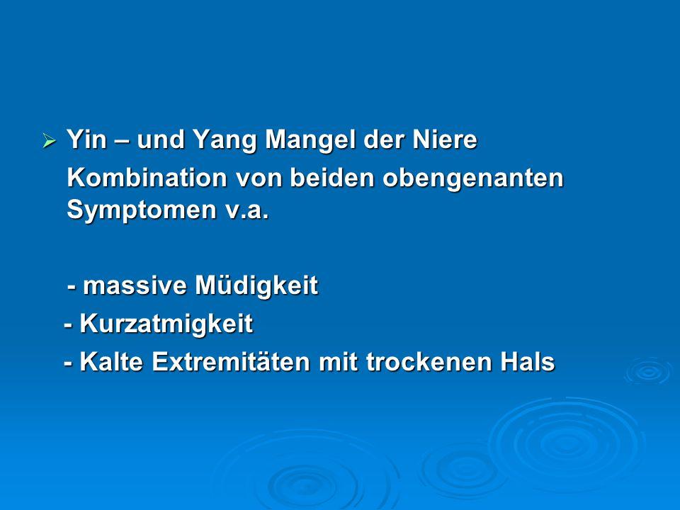  Yin – und Yang Mangel der Niere Kombination von beiden obengenanten Symptomen v.a. - massive Müdigkeit - Kurzatmigkeit - Kurzatmigkeit - Kalte Extre
