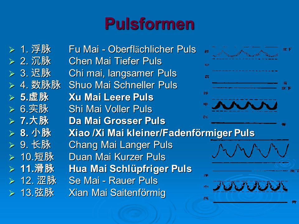 Pulsformen  1.浮脉 Fu Mai - Oberfl ä chlicher Puls  2.
