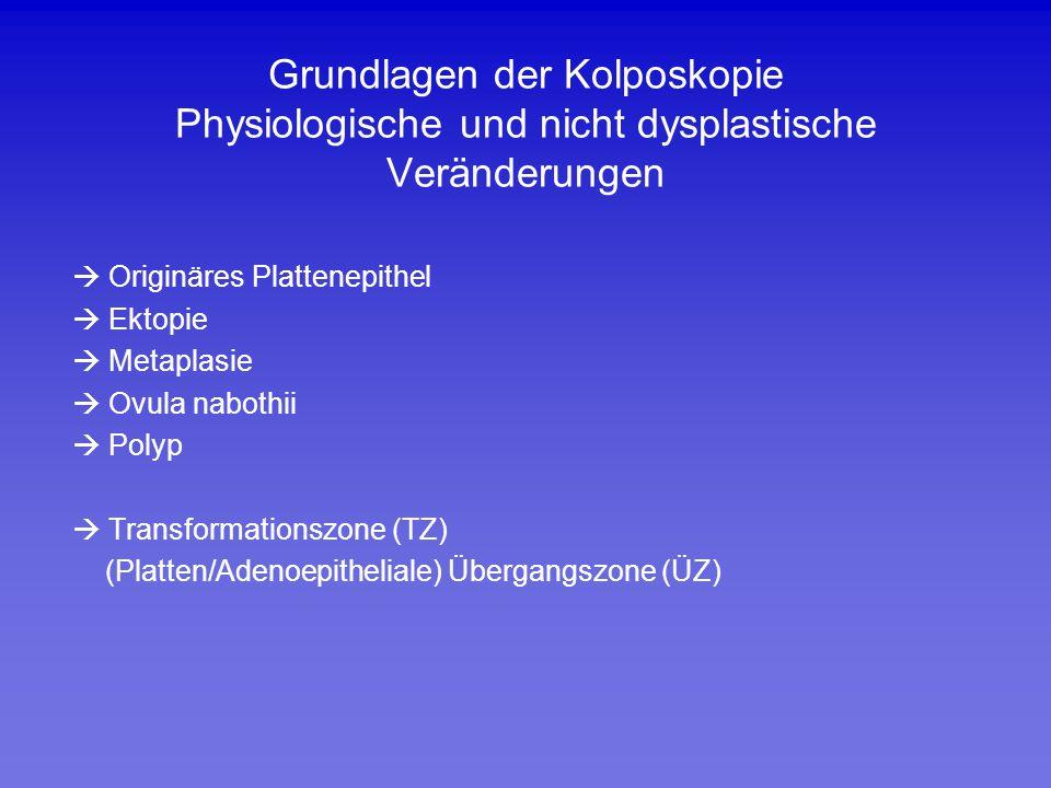 Grundlagen der Kolposkopie Physiologische und nicht dysplastische Veränderungen  Originäres Plattenepithel  Ektopie  Metaplasie  Ovula nabothii 