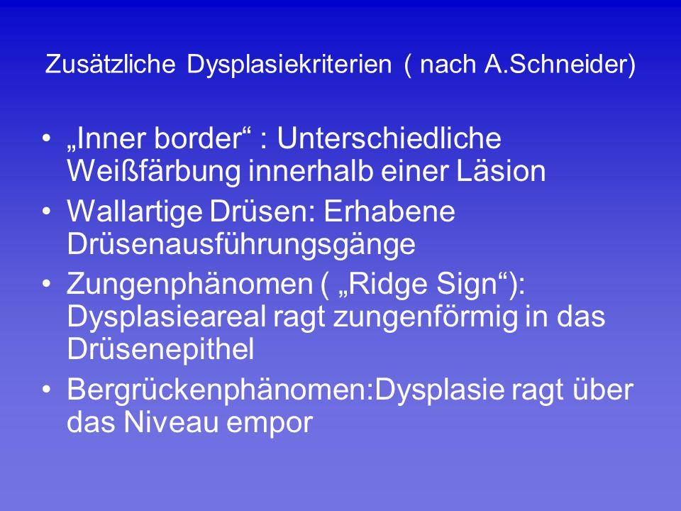 """Zusätzliche Dysplasiekriterien ( nach A.Schneider) """"Inner border"""" : Unterschiedliche Weißfärbung innerhalb einer Läsion Wallartige Drüsen: Erhabene Dr"""