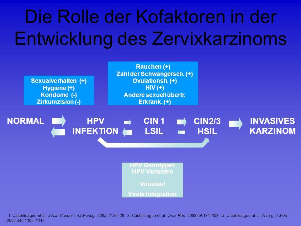 Die Rolle der Kofaktoren in der Entwicklung des Zervixkarzinoms HPV Genotypen HPV Varianten Viruslast Virale Integration Sexualverhalten (+) Hygiene (