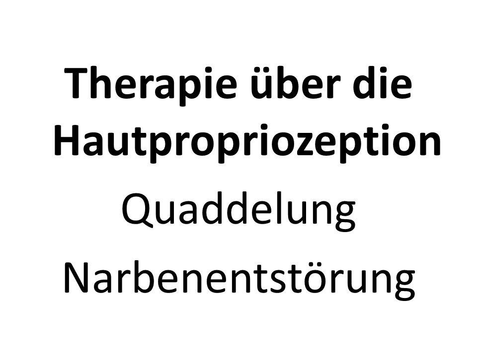 Therapie über die Hautpropriozeption Quaddelung Narbenentstörung