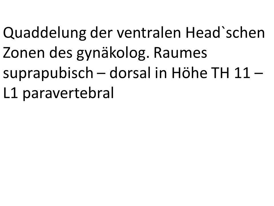 Quaddelung der ventralen Head`schen Zonen des gynäkolog. Raumes suprapubisch – dorsal in Höhe TH 11 – L1 paravertebral