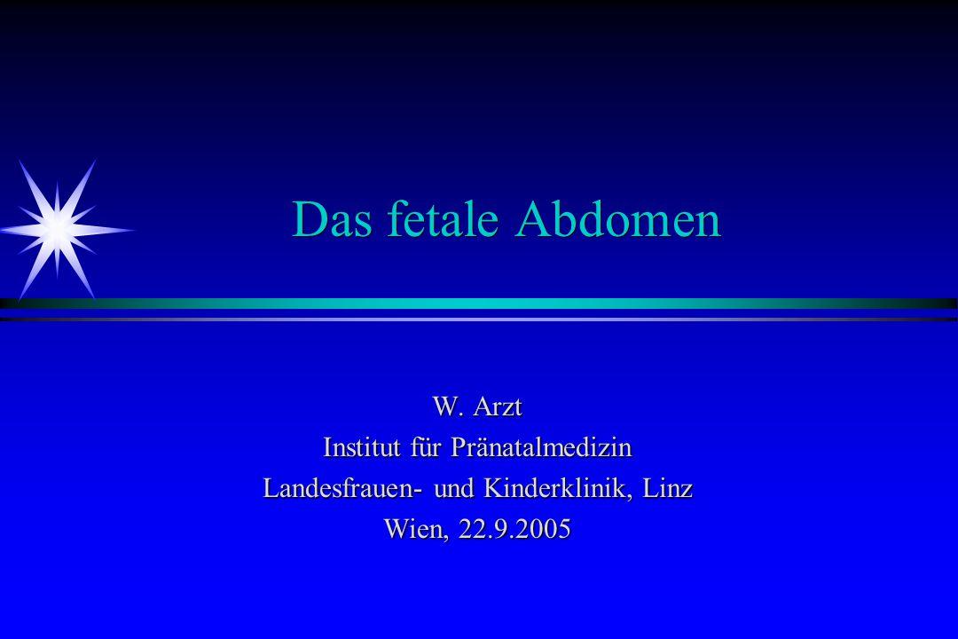 Das fetale Abdomen W. Arzt Institut für Pränatalmedizin Landesfrauen- und Kinderklinik, Linz Wien, 22.9.2005