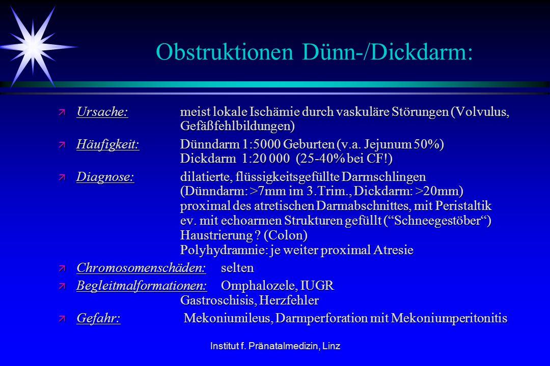 Institut f. Pränatalmedizin, Linz Obstruktionen Dünn-/Dickdarm: ä Ursache: meist lokale Ischämie durch vaskuläre Störungen (Volvulus, Gefäßfehlbildung