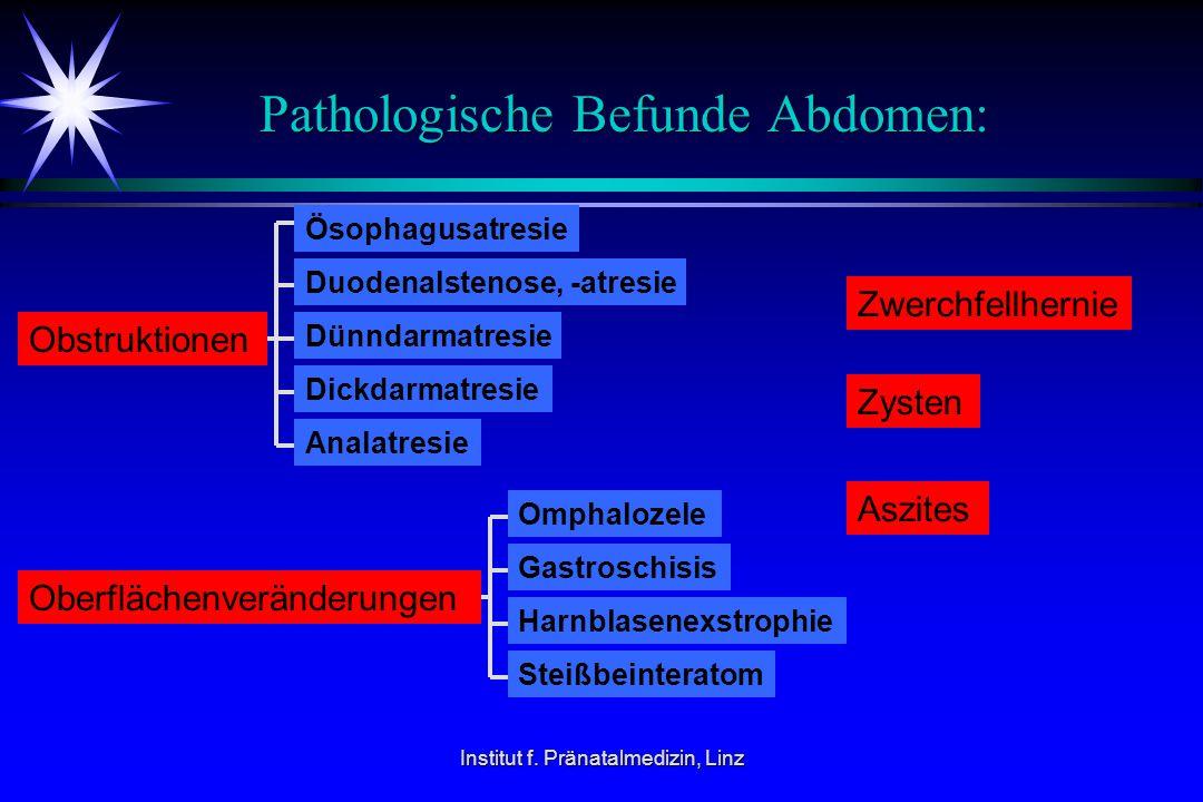 Institut f. Pränatalmedizin, Linz Pathologische Befunde Abdomen: Obstruktionen Ösophagusatresie Duodenalstenose, -atresie Dünndarmatresie Dickdarmatre