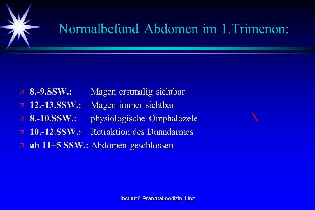 Institut f. Pränatalmedizin, Linz Normalbefund Abdomen im 1.Trimenon: ä 8.-9.SSW.: Magen erstmalig sichtbar ä 12.-13.SSW.: Magen immer sichtbar ä 8.-1