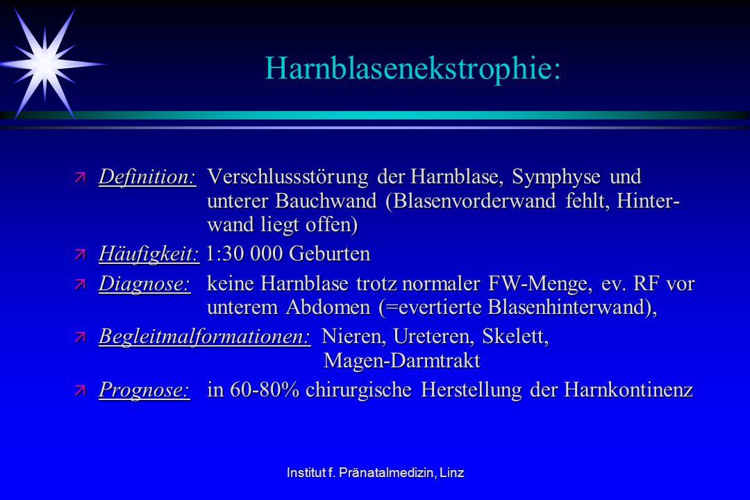 Institut f. Pränatalmedizin, Linz Harnblasenekstrophie: ä Definition: Verschlussstörung der Harnblase, Symphyse und unterer Bauchwand (Blasenvorderwan