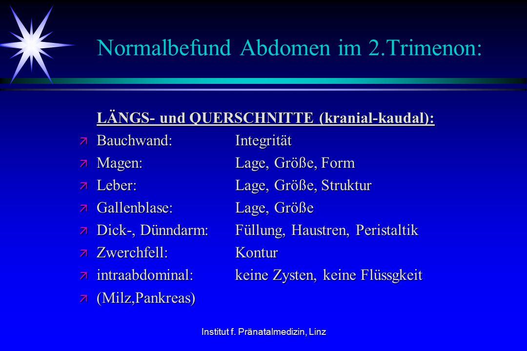 Institut f. Pränatalmedizin, Linz Normalbefund Abdomen im 2.Trimenon: LÄNGS- und QUERSCHNITTE (kranial-kaudal): LÄNGS- und QUERSCHNITTE (kranial-kauda