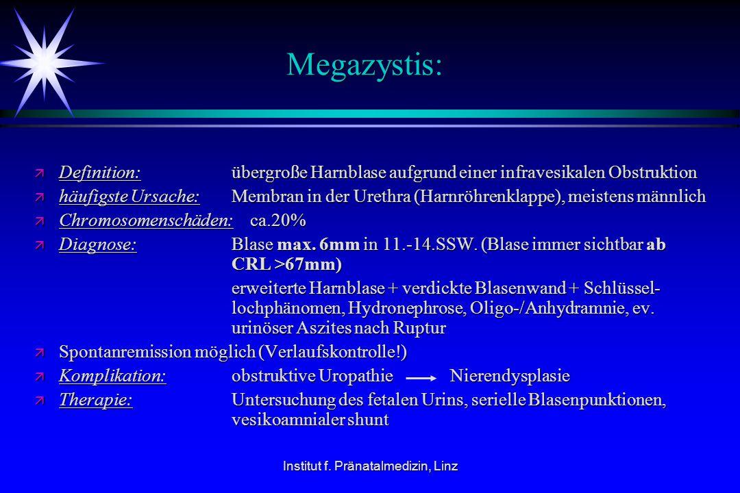 Institut f. Pränatalmedizin, Linz Megazystis: ä Definition:übergroße Harnblase aufgrund einer infravesikalen Obstruktion ä häufigste Ursache: Membran