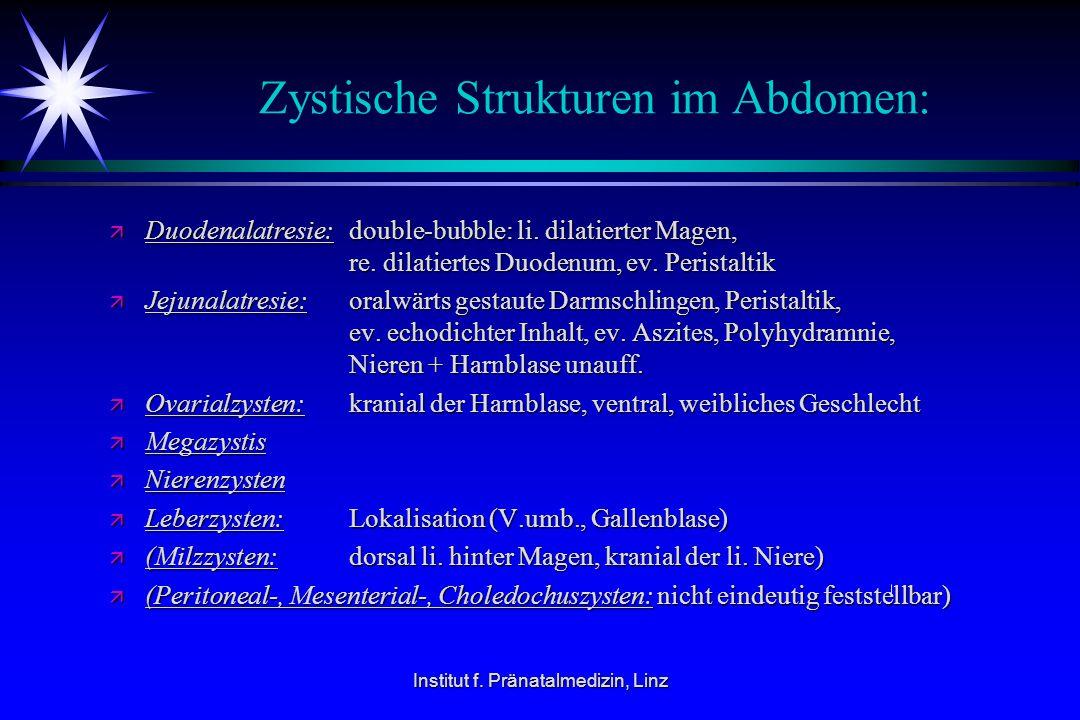 Institut f. Pränatalmedizin, Linz Zystische Strukturen im Abdomen: ä Duodenalatresie: double-bubble: li. dilatierter Magen, re. dilatiertes Duodenum,