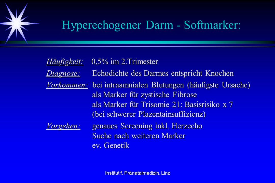 Institut f. Pränatalmedizin, Linz Hyperechogener Darm - Softmarker: Häufigkeit: 0,5% im 2.Trimester Häufigkeit: 0,5% im 2.Trimester Diagnose: Echodich