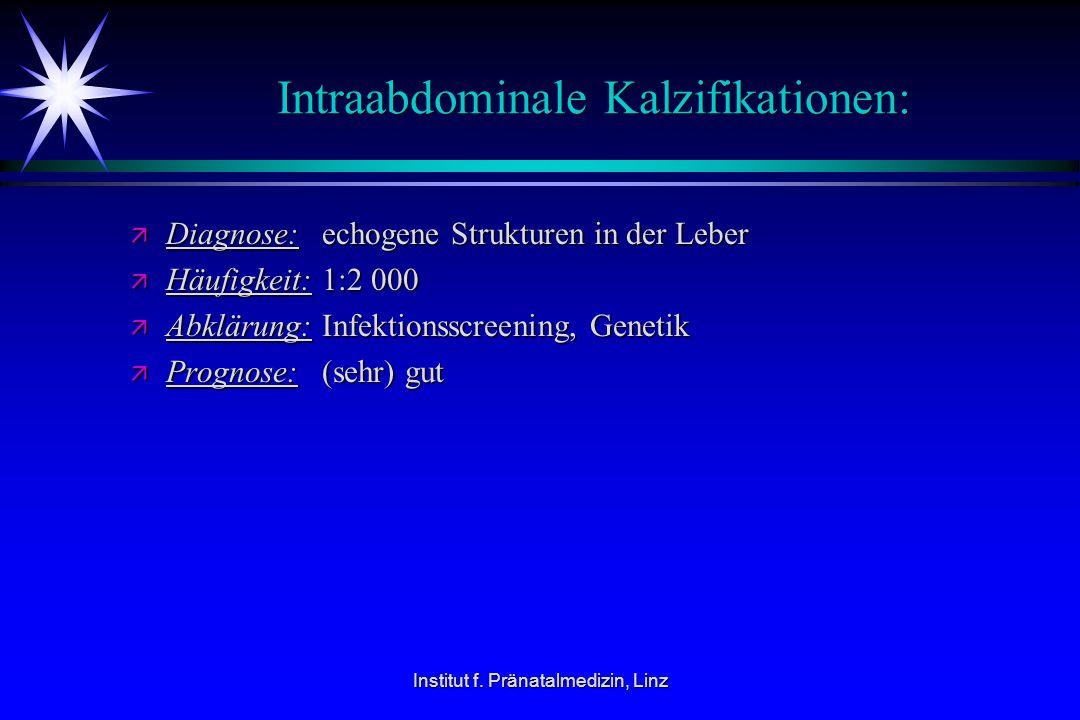 Institut f. Pränatalmedizin, Linz Intraabdominale Kalzifikationen: ä Diagnose:echogene Strukturen in der Leber ä Häufigkeit:1:2 000 ä Abklärung:Infekt