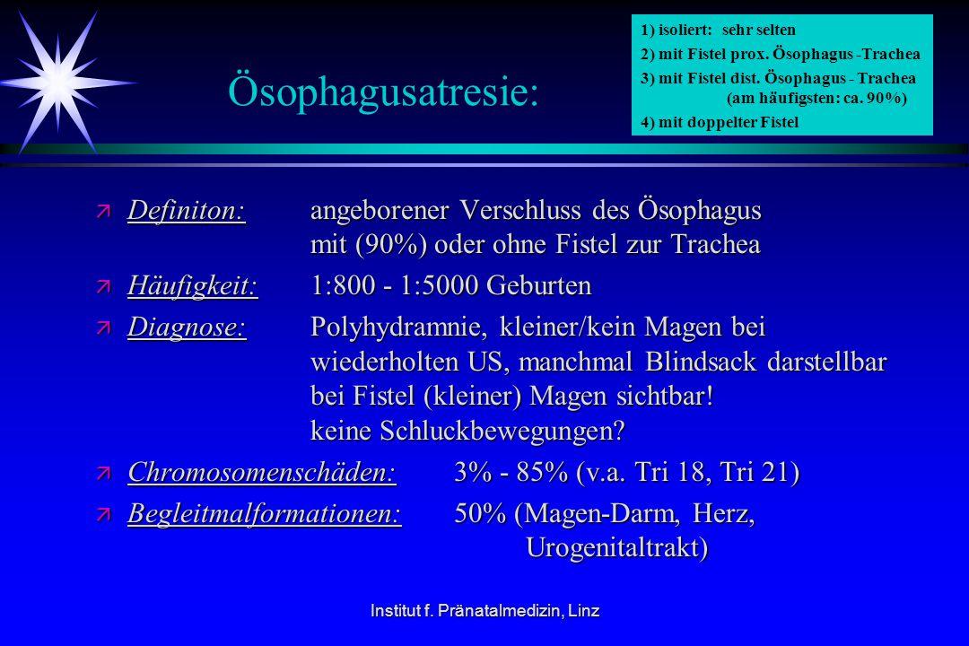 Institut f. Pränatalmedizin, Linz Ösophagusatresie: ä Definiton: angeborener Verschluss des Ösophagus mit (90%) oder ohne Fistel zur Trachea ä Häufigk