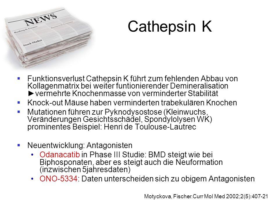 Cathepsin K  Funktionsverlust Cathepsin K führt zum fehlenden Abbau von Kollagenmatrix bei weiter funtionierender Demineralisation ►vermehrte Knochen