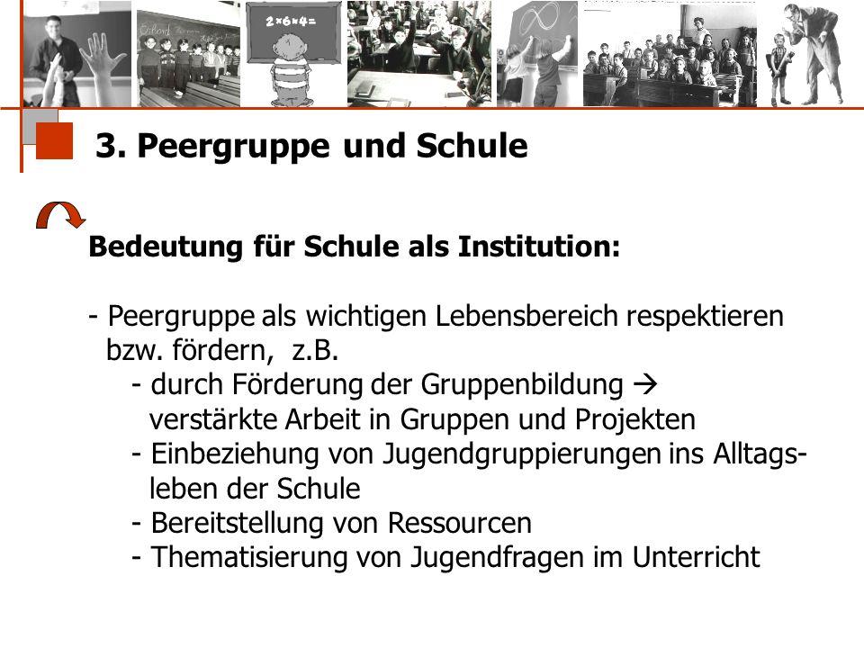 3. Peergruppe und Schule Bedeutung für Schule als Institution: - Peergruppe als wichtigen Lebensbereich respektieren bzw. fördern, z.B. - durch Förder