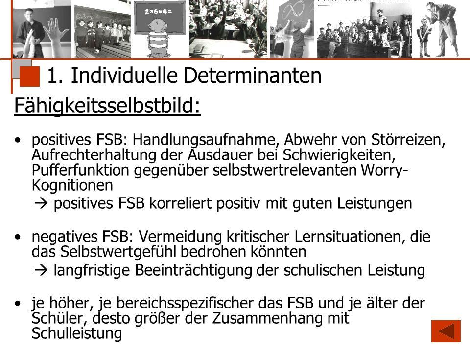 1. Individuelle Determinanten Fähigkeitsselbstbild: positives FSB: Handlungsaufnahme, Abwehr von Störreizen, Aufrechterhaltung der Ausdauer bei Schwie