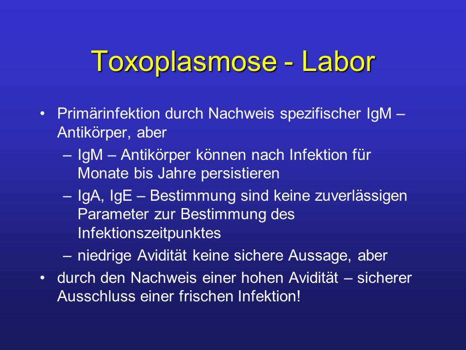 Toxoplasmose - Labor Primärinfektion durch Nachweis spezifischer IgM – Antikörper, aber –IgM – Antikörper können nach Infektion für Monate bis Jahre p