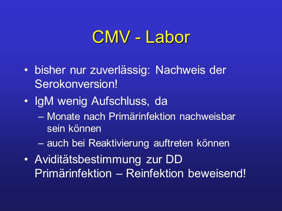 CMV - Labor bisher nur zuverlässig: Nachweis der Serokonversion.