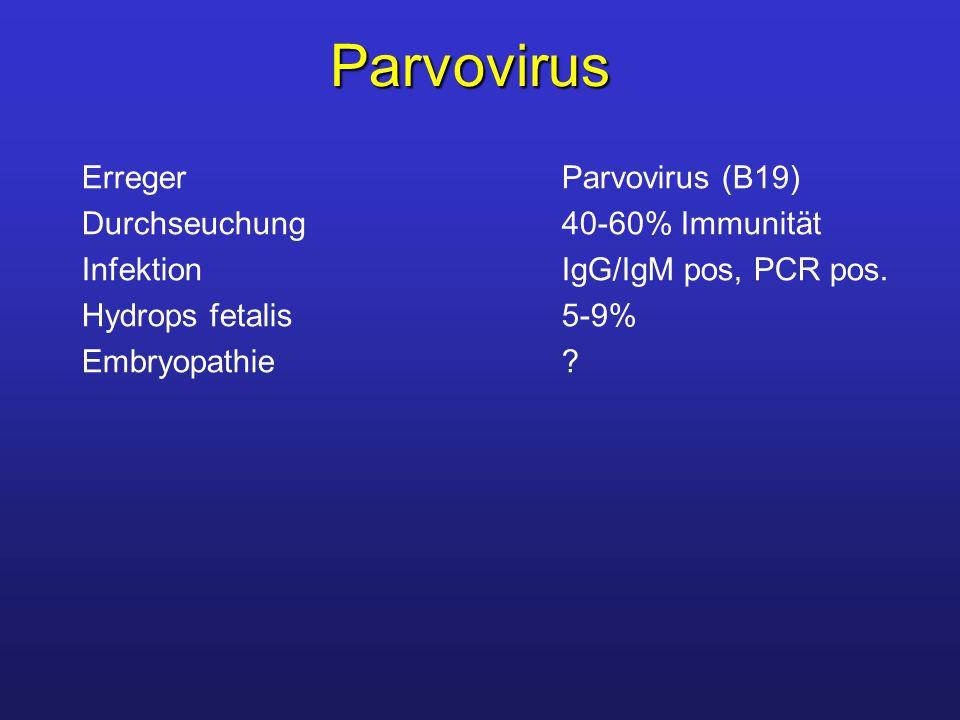 Parvovirus ErregerParvovirus (B19) Durchseuchung 40-60% Immunität InfektionIgG/IgM pos, PCR pos. Hydrops fetalis5-9% Embryopathie?