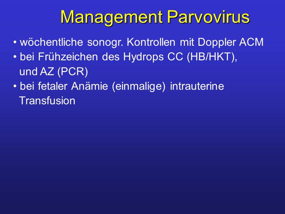 Management Parvovirus wöchentliche sonogr. Kontrollen mit Doppler ACM bei Frühzeichen des Hydrops CC (HB/HKT), und AZ (PCR) bei fetaler Anämie (einmal