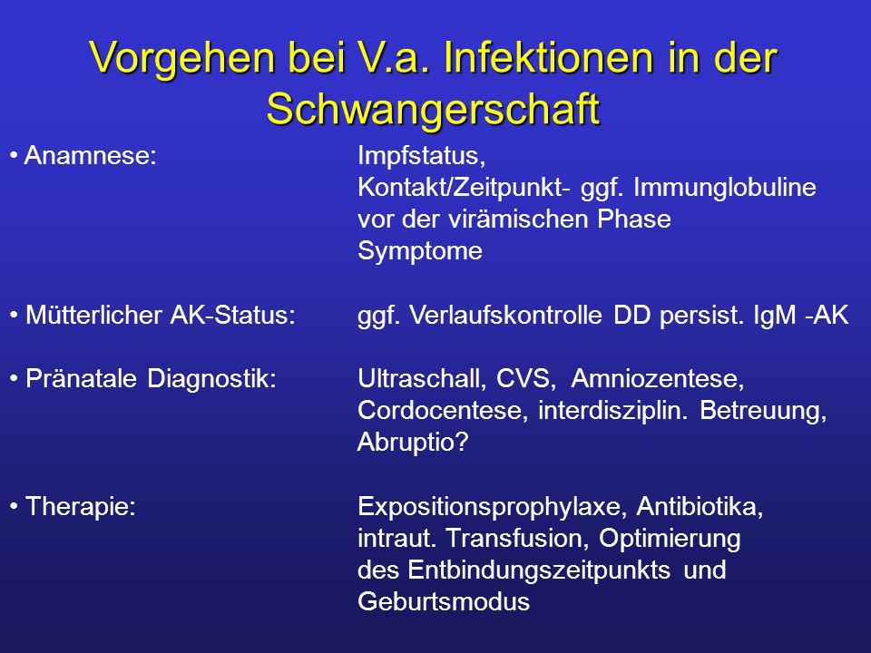 Vorgehen bei V.a. Infektionen in der Schwangerschaft Anamnese: Impfstatus, Kontakt/Zeitpunkt- ggf. Immunglobuline vor der virämischen Phase Symptome M