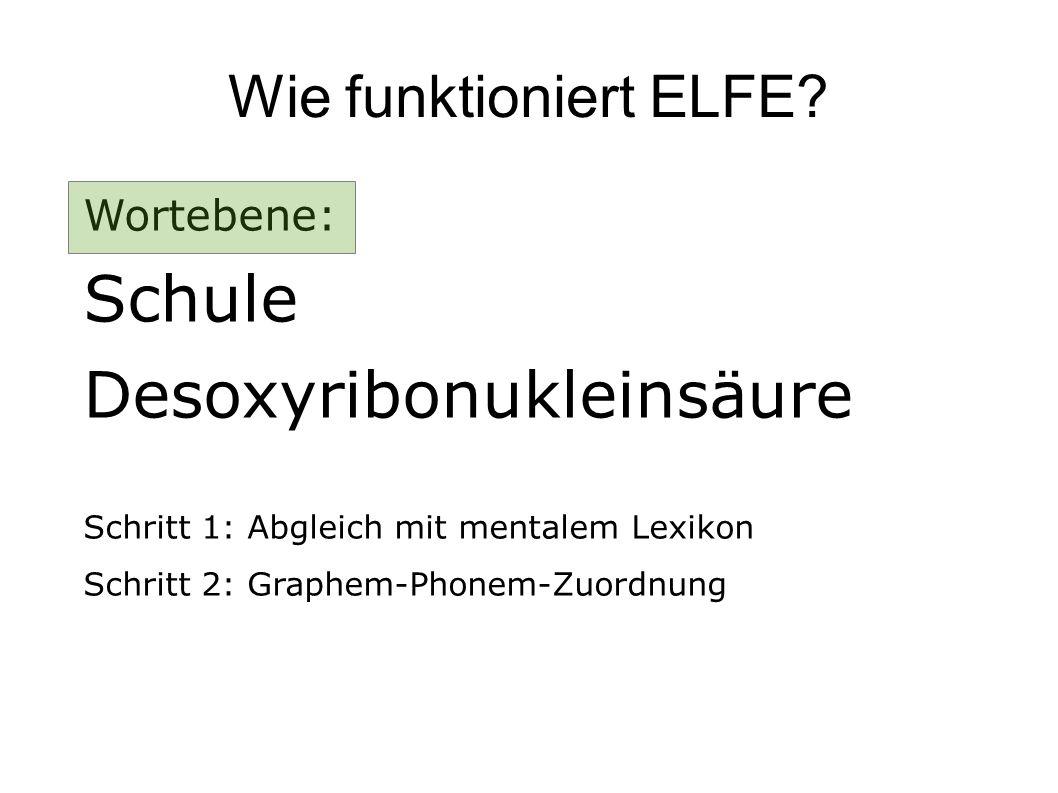 Wie funktioniert ELFE? Wortebene: Schule Desoxyribonukleinsäure Schritt 1: Abgleich mit mentalem Lexikon Schritt 2: Graphem-Phonem-Zuordnung