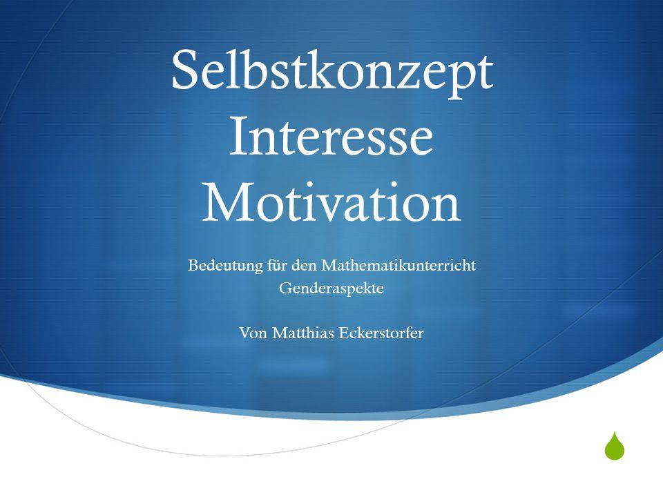  Selbstkonzept Interesse Motivation Bedeutung für den Mathematikunterricht Genderaspekte Von Matthias Eckerstorfer