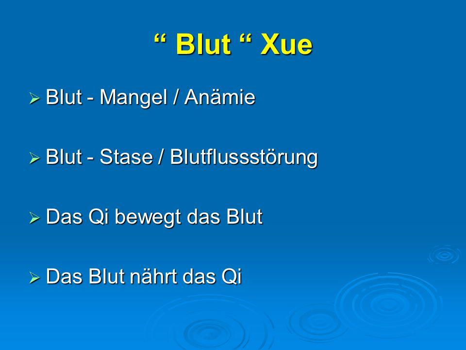 Blut Xue  Blut - Mangel / Anämie  Blut - Stase / Blutflussstörung  Das Qi bewegt das Blut  Das Blut nährt das Qi