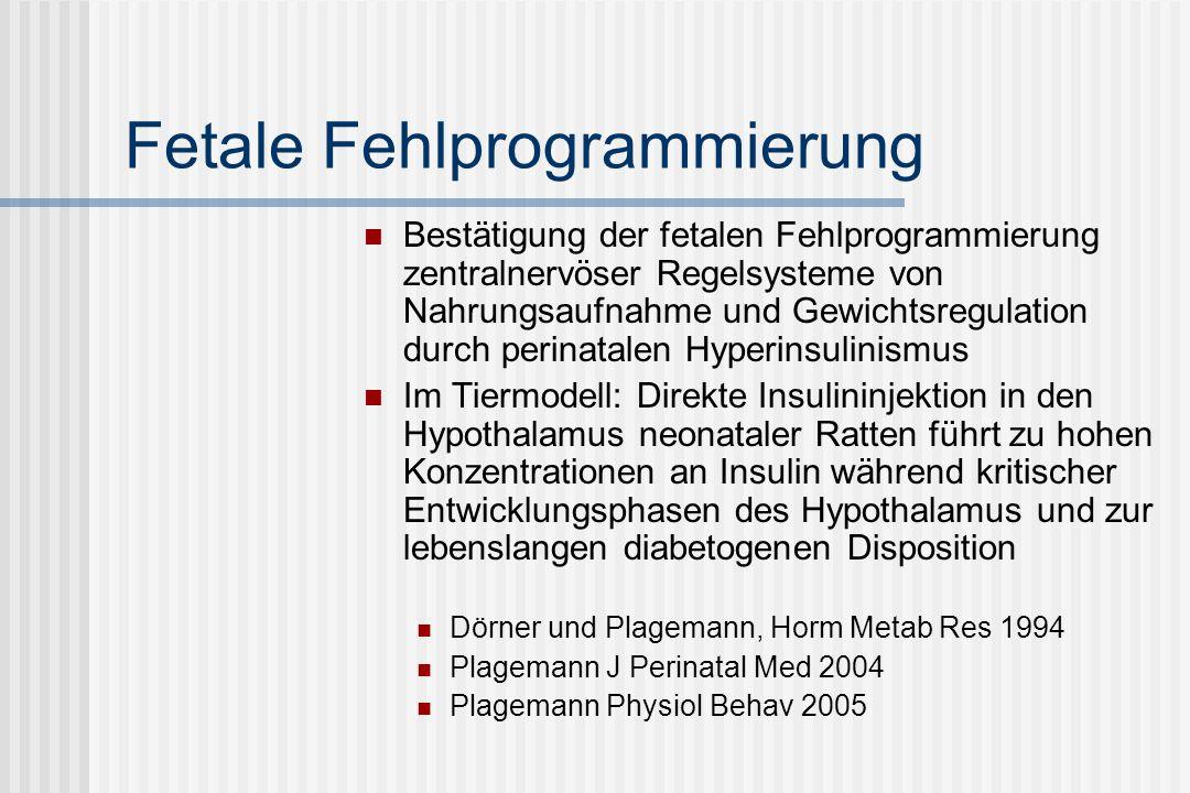 Fetale Fehlprogrammierung Bestätigung der fetalen Fehlprogrammierung zentralnervöser Regelsysteme von Nahrungsaufnahme und Gewichtsregulation durch perinatalen Hyperinsulinismus Im Tiermodell: Direkte Insulininjektion in den Hypothalamus neonataler Ratten führt zu hohen Konzentrationen an Insulin während kritischer Entwicklungsphasen des Hypothalamus und zur lebenslangen diabetogenen Disposition Dörner und Plagemann, Horm Metab Res 1994 Plagemann J Perinatal Med 2004 Plagemann Physiol Behav 2005