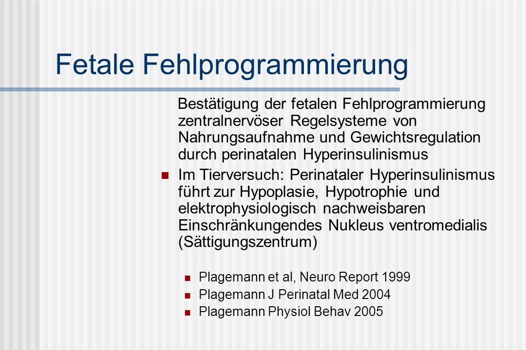 Fetale Fehlprogrammierung Bestätigung der fetalen Fehlprogrammierung zentralnervöser Regelsysteme von Nahrungsaufnahme und Gewichtsregulation durch perinatalen Hyperinsulinismus Im Tierversuch: Perinataler Hyperinsulinismus führt zur Hypoplasie, Hypotrophie und elektrophysiologisch nachweisbaren Einschränkungendes Nukleus ventromedialis (Sättigungszentrum) Plagemann et al, Neuro Report 1999 Plagemann J Perinatal Med 2004 Plagemann Physiol Behav 2005