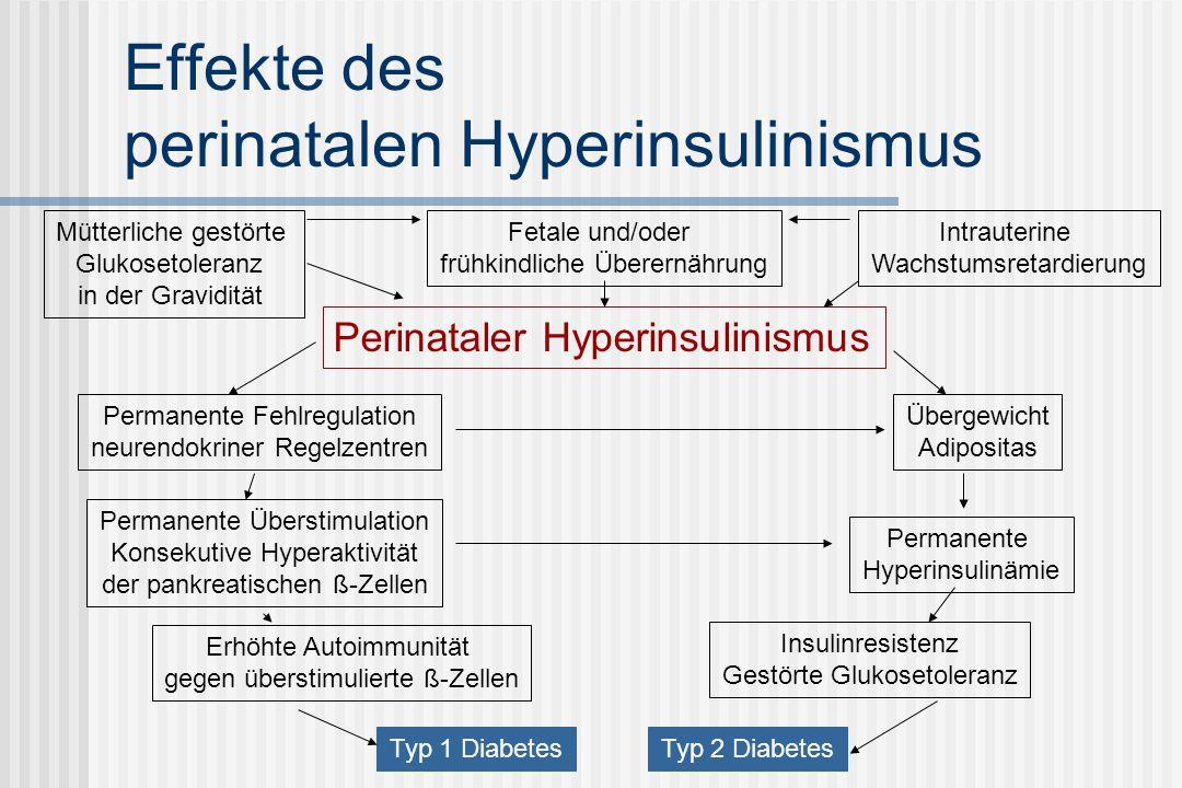 Effekte des perinatalen Hyperinsulinismus Perinataler Hyperinsulinismus Fetale und/oder frühkindliche Überernährung Mütterliche gestörte Glukosetoleranz in der Gravidität Intrauterine Wachstumsretardierung Permanente Fehlregulation neurendokriner Regelzentren Übergewicht Adipositas Permanente Überstimulation Konsekutive Hyperaktivität der pankreatischen ß-Zellen Typ 1 Diabetes Erhöhte Autoimmunität gegen überstimulierte ß-Zellen Permanente Hyperinsulinämie Insulinresistenz Gestörte Glukosetoleranz Typ 2 Diabetes