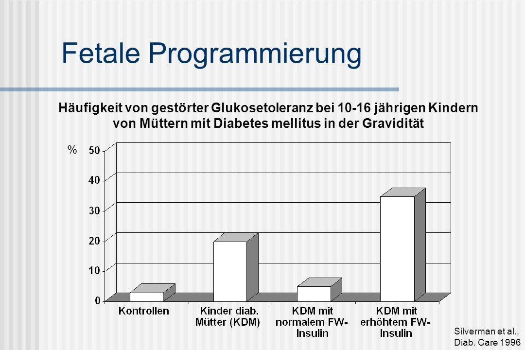 Fetale Programmierung Häufigkeit von gestörter Glukosetoleranz bei 10-16 jährigen Kindern von Müttern mit Diabetes mellitus in der Gravidität Silverman et al., Diab.