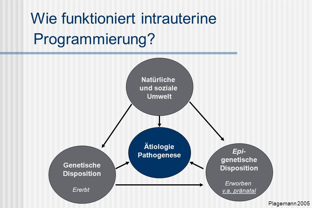 Wie funktioniert intrauterine Natürliche und soziale Umwelt Epi- genetische Disposition Erworben v.a.