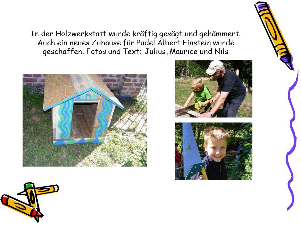 In der Holzwerkstatt wurde kräftig gesägt und gehämmert. Auch ein neues Zuhause für Pudel Albert Einstein wurde geschaffen. Fotos und Text: Julius, Ma