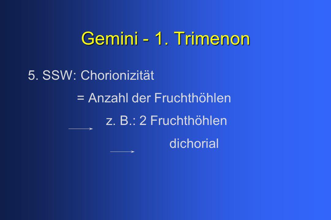 Gemini - 1.Trimenon 5. SSW: Chorionizität = Anzahl der Fruchthöhlen z.