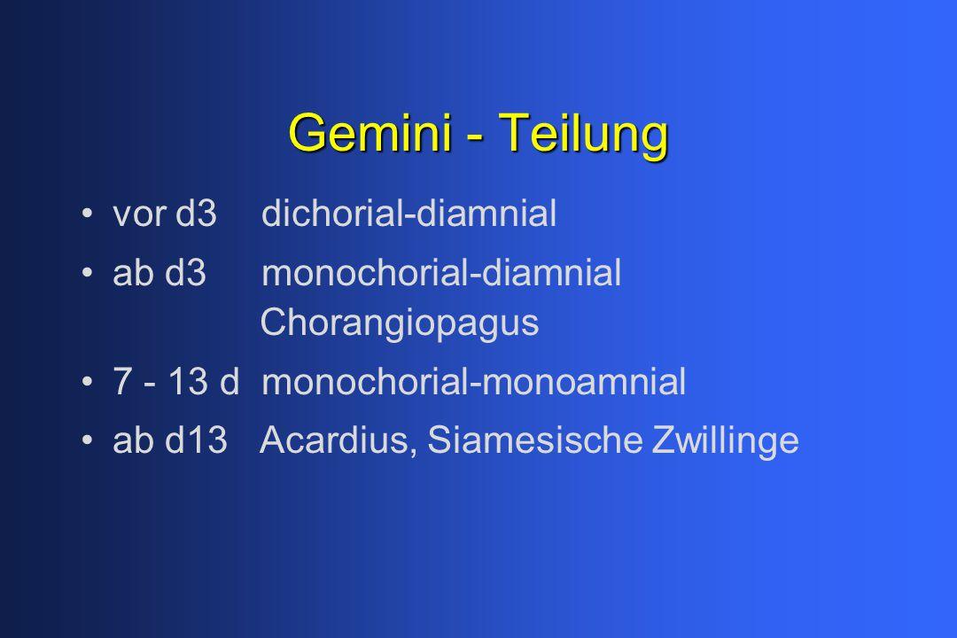 Gemini - Teilung vor d3 dichorial-diamnial ab d3 monochorial-diamnial Chorangiopagus 7 - 13 d monochorial-monoamnial ab d13 Acardius, Siamesische Zwillinge