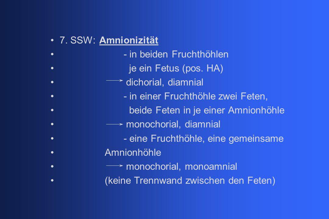 7. SSW:Amnionizität - in beiden Fruchthöhlen je ein Fetus (pos. HA) dichorial, diamnial - in einer Fruchthöhle zwei Feten, beide Feten in je einer Amn