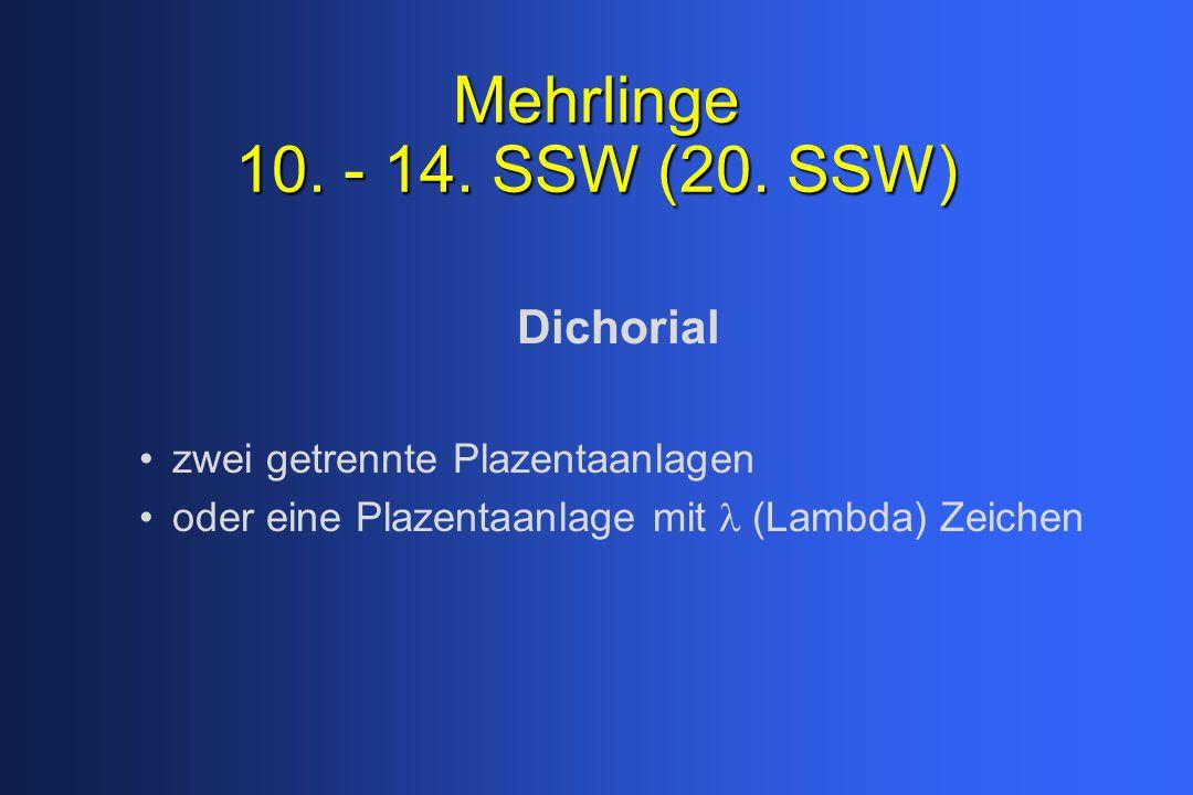 Mehrlinge 10. - 14. SSW (20. SSW) Dichorial zwei getrennte Plazentaanlagen oder eine Plazentaanlage mit  (Lambda) Zeichen