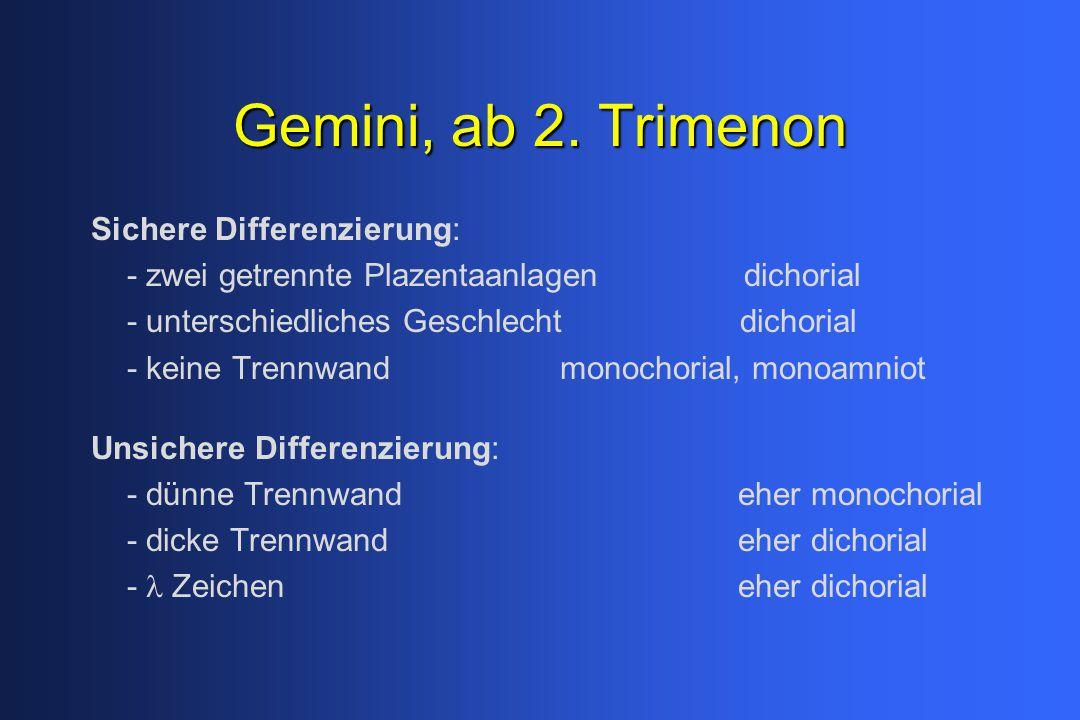 Gemini, ab 2.
