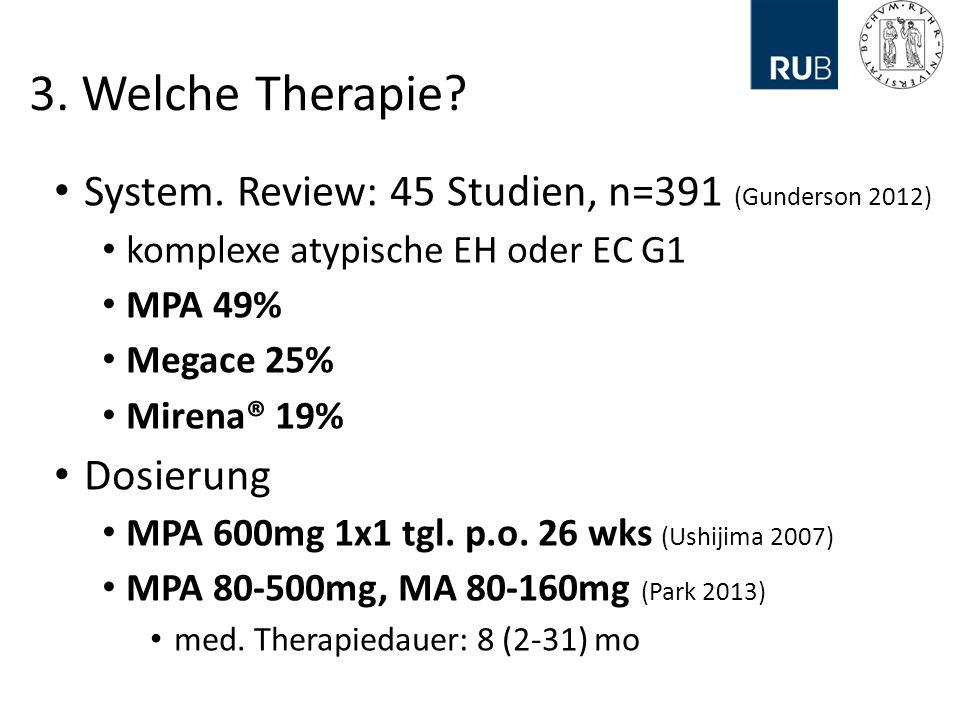 3.Welche Therapie. System.