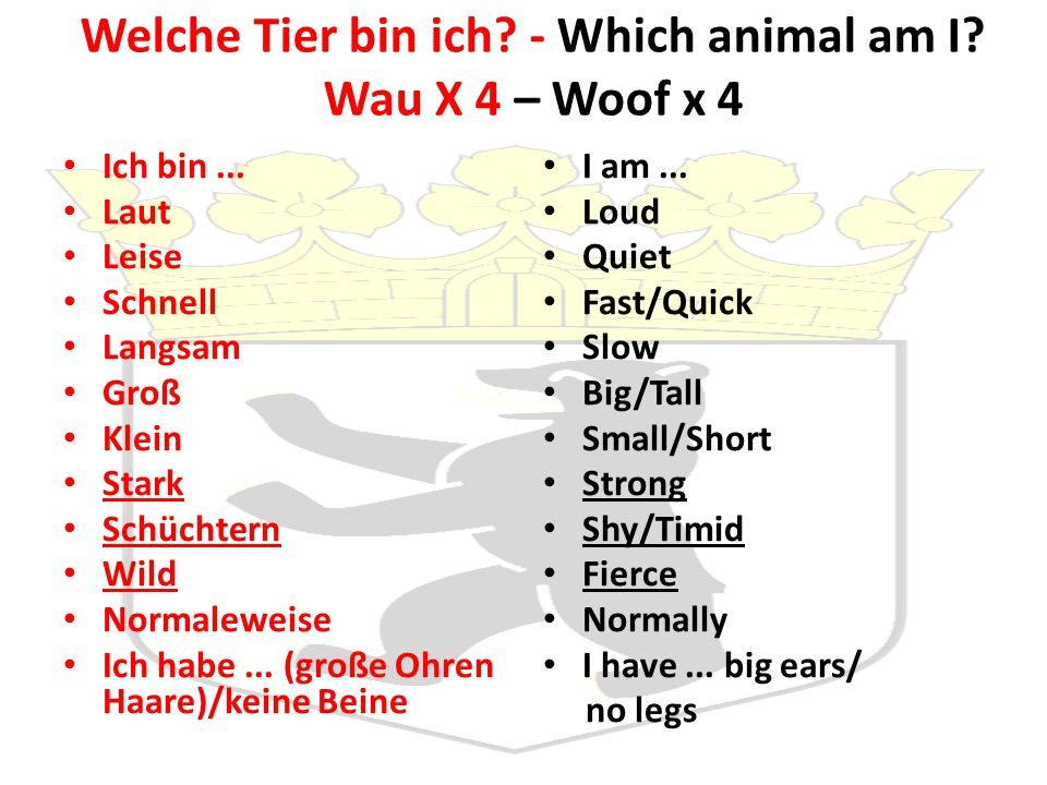 Welche Tier bin ich.- Which animal am I. Wau X 4 – Woof x 4 Ich bin...