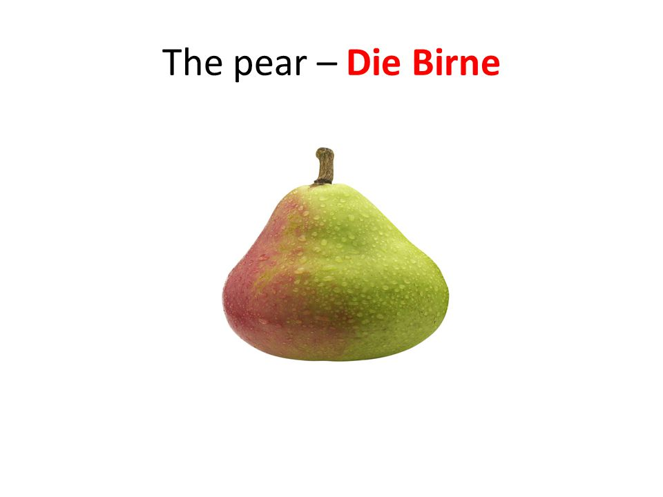 The pear – Die Birne