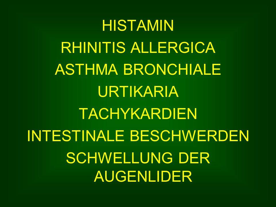 HISTAMIN RHINITIS ALLERGICA ASTHMA BRONCHIALE URTIKARIA TACHYKARDIEN INTESTINALE BESCHWERDEN SCHWELLUNG DER AUGENLIDER