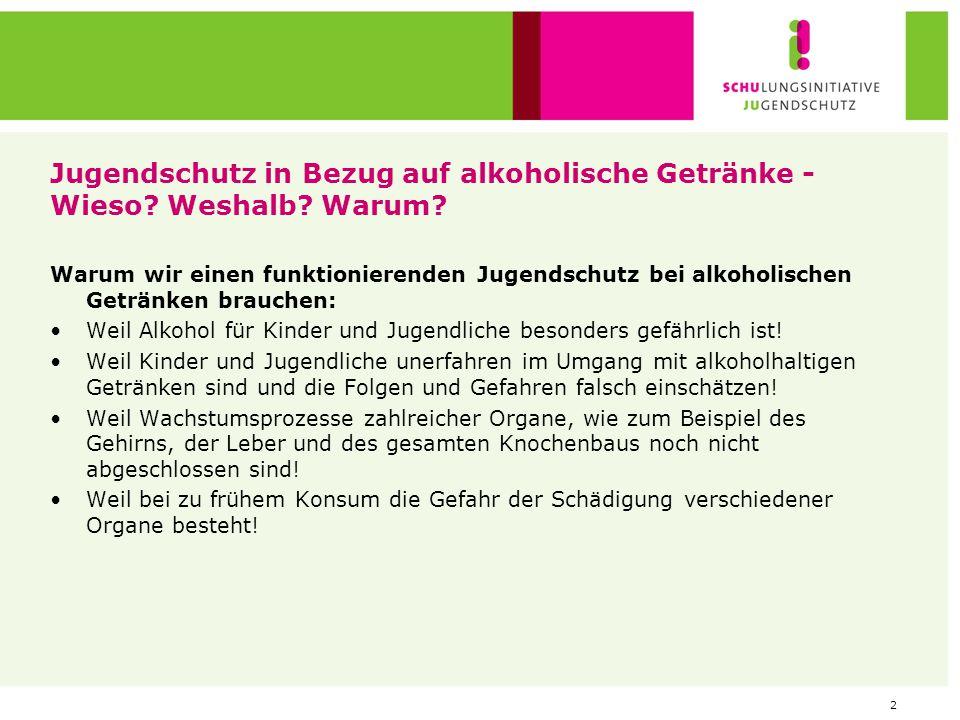 2 Jugendschutz in Bezug auf alkoholische Getränke - Wieso? Weshalb? Warum? Warum wir einen funktionierenden Jugendschutz bei alkoholischen Getränken b