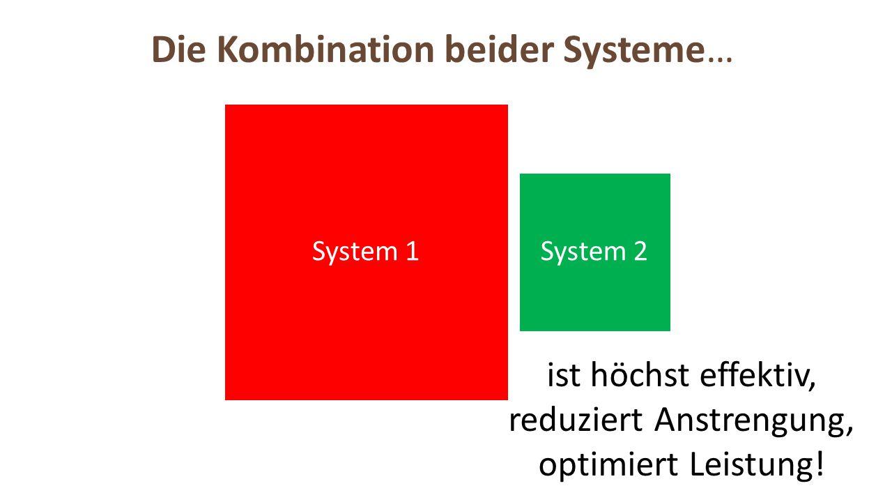 System 1 System 2 ist höchst effektiv, reduziert Anstrengung, optimiert Leistung!