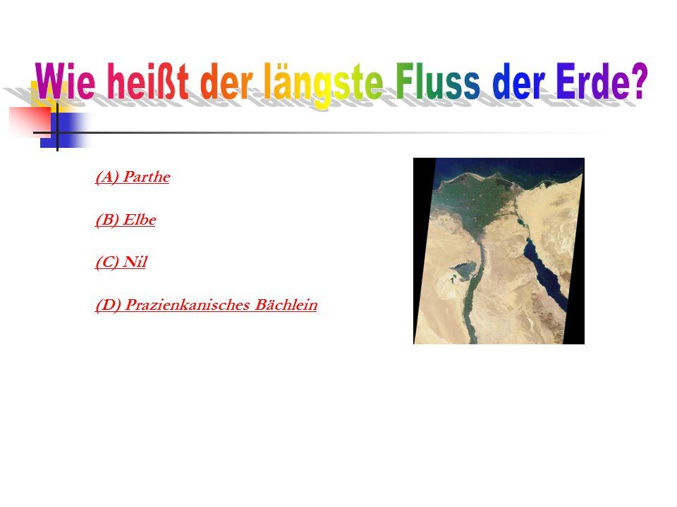 (A) Parthe (B) Elbe (C) Nil (D) Prazienkanisches Bächlein