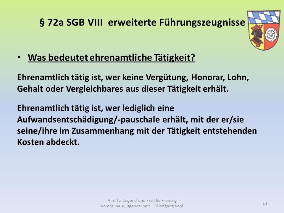 § 72a SGB VIII erweiterte Führungszeugnisse Was bedeutet ehrenamtliche Tätigkeit.
