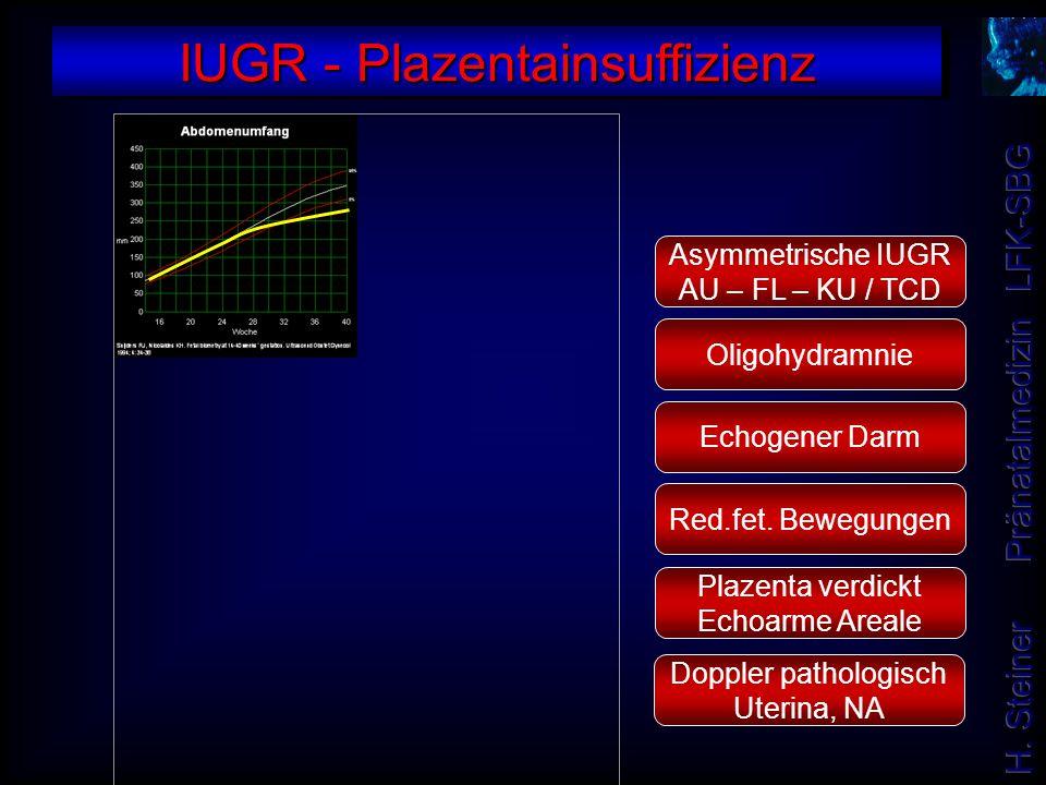 Asymmetrische IUGR AU – FL – KU / TCD Oligohydramnie Doppler pathologisch Uterina, NA Plazenta verdickt Echoarme Areale Red.fet. Bewegungen Echogener